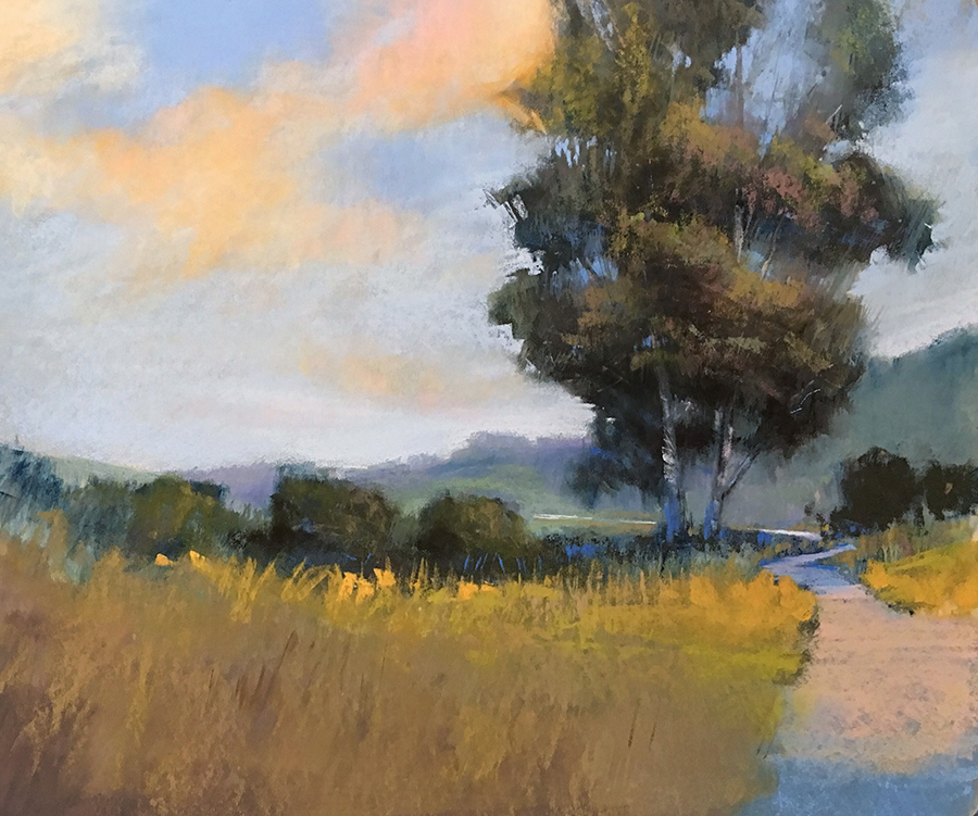 Bethany Fields