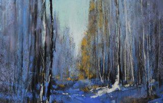 Bethany Fields - Winter Walk