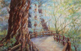 Ruby Tebelak - Muir Woods Morning