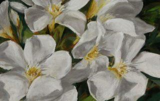 Debora Wilbert - White Oleander
