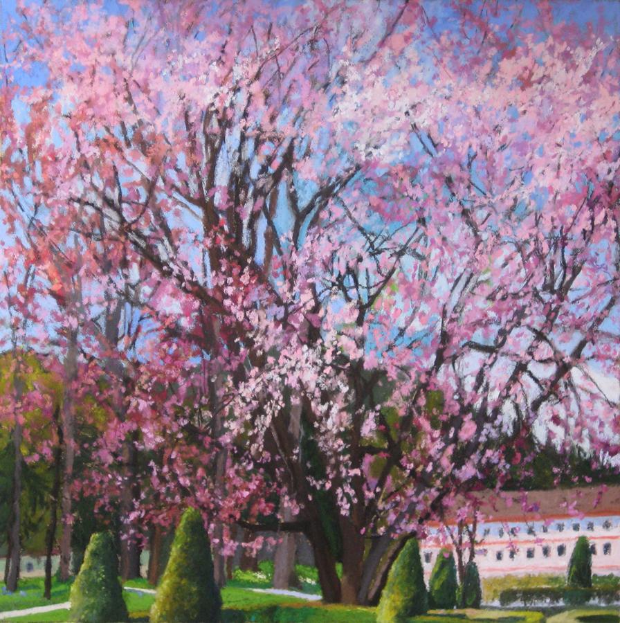 Title: Cherry Blossoms Artist: Shoshanna Ahart